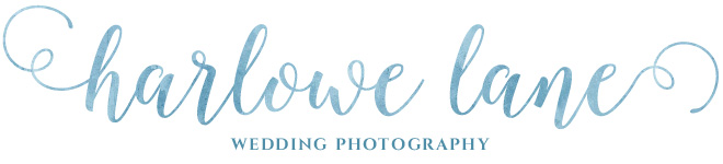 Houston Wedding Photographers: Harlowe Lane Modern Vintage Wedding Photography in Houston, TX